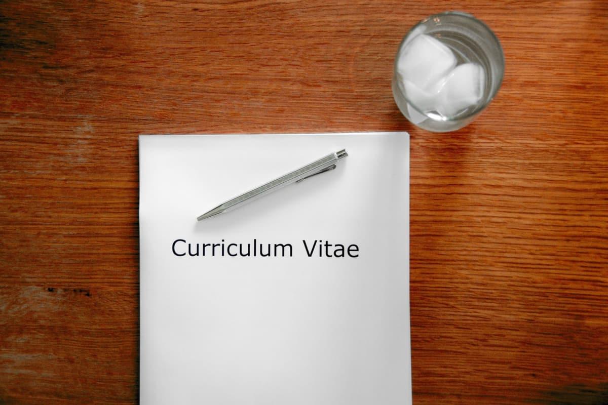 Artist curriculum vitae Artist CV